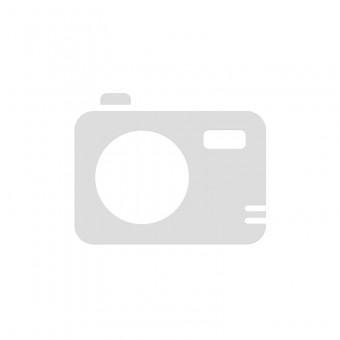 Valve Spring Range Rover Evoque 2.0 Petrol 240PS 16V LR031531